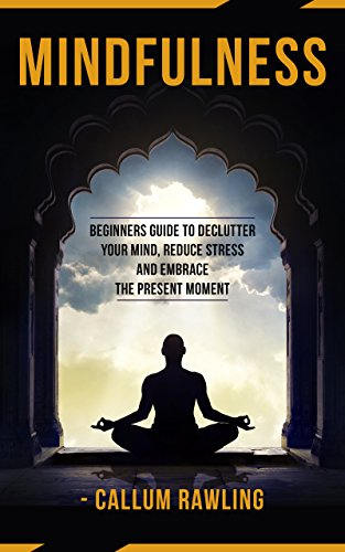 Mindfulness: Beginners Guide To Declutter Your Mind, Reduce Stress And Embrace The Present Moment (Mindfulness, Mindfulness For Beginners, Meditation, Mindfulness Practical Guide)