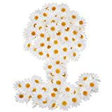 100 Piezas de Flores de Margaritas de Tela Blancas Flores Falsas 4 cm Margaritas Artificiales para Decoración de Fiesta Boda Capo de Pascua