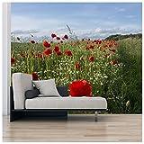 azutura Campo de Amapola roja Fotomurales Paisaje Floral Papel Pintado Sala Decoración Disponible en 8 Tamaños Gigantesco Digital
