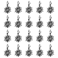 ‏‪Coxeer 20PCS DIY Jewelry Pendant Decorative Silver Charms Pendant Embellishment Charm‬‏