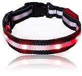 Leuchtendes LED- Sicherheits- Hundehalsband, extrem hell, längenverstellbar und mit 3 Leucht-Modi (M: 26cm - 47cm, ROT)