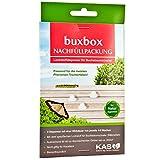 KAS buxbox Buchsbaumzünsler-Falle (Nachfüllpack mit 3 Pheromon-Kapseln)
