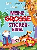 Meine große Stickerbibel - Jan Godfrey