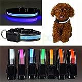 Solaraufladung USB-Laden LED BlinkHundehalsband , Verstellbar Wasserdichte HalsbandHund , Nylon Leuchtende Halsbänder Sicherheits Halsband , Geeignet für alle Arten von Hunden ,Katzen usw (L, Blau)