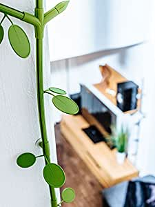 """cip PLANTS, """"Alder"""" green - a new cable trunking! Design, decorate, hide ugly cables! TV, hdmi, Speaker, Lamps"""