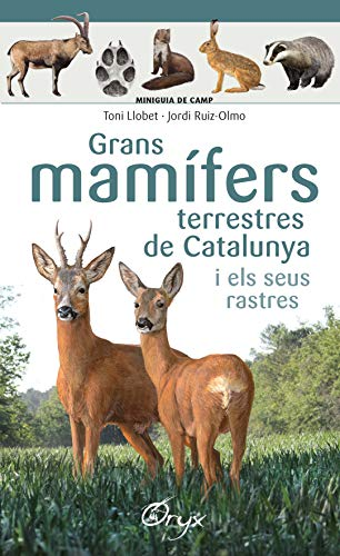Grans mamífers terrestres de Catalunya i els seus rastres (Miniguia de camp) por Toni Llobet François