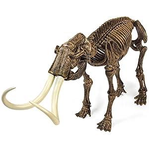 Cazadores Dr. Steve CL1506K - Paleo Expedición Kit Dino Dig: Modelo Mammoth