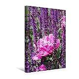 Premium Textil-Leinwand 30 x 45 cm Hoch-Format Pinke Pfingstrose | Wandbild, HD-Bild auf Keilrahmen, Fertigbild auf hochwertigem Vlies, Leinwanddruck von Gisela Kruse