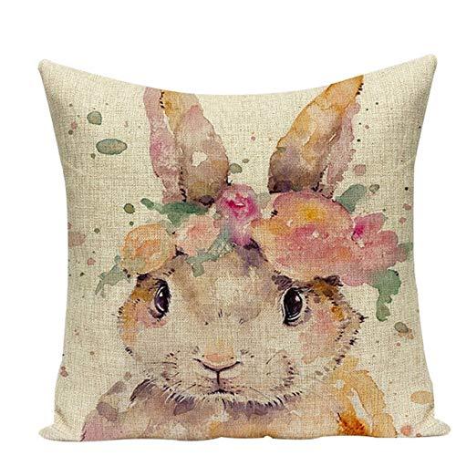 CHDMYTG Cuscini per cuscini per animali colorati cuscini per la casa Cuscini...