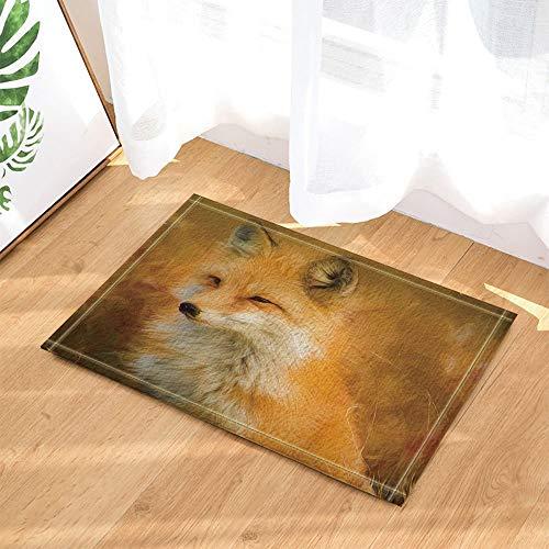 ZZ7379SL Safari Tier Dekor lustige süße Fox auf Prairie Ölgemälde Design Bad Teppiche 3D Digitaldruck 40 x 60 cm Schlafzimmer Küche Kinder Badezimmer Matte Zubehör (Lustige Safari Super)