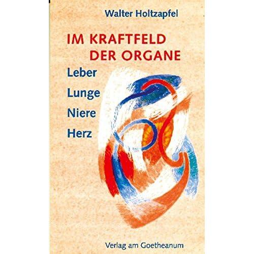 PDF] Im Kraftfeld der Organe: Leber - Lunge - Niere - Herz KOSTENLOS ...
