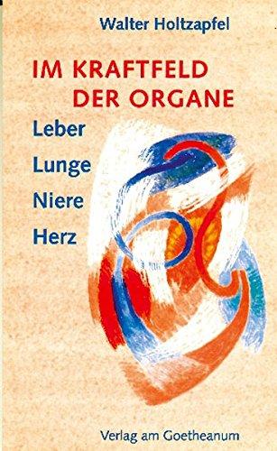 Nieren-gesundheit (Im Kraftfeld der Organe: Leber, Lunge, Niere, Herz)