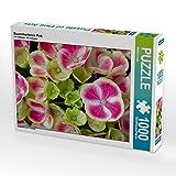 Bauernhortensie Pink 1000 Teile Puzzle quer (CALVENDO Natur)