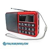 PRUNUS Portables Radio FM/AM(MW)/SW MP3 –Große gummierte Knöpfe – großes...