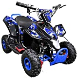 Leopard 36V 800W Blue 4'' Kids Battery Powered Mini ATV Quad Bike {3