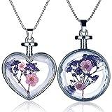 Yumilok Mehrfarbige Trockene Blumen Transparent Herz/Rund Anhänger Halskette Legierung Glas Flasche Kettenänhanger für Damen Mädchen (Multi-B)