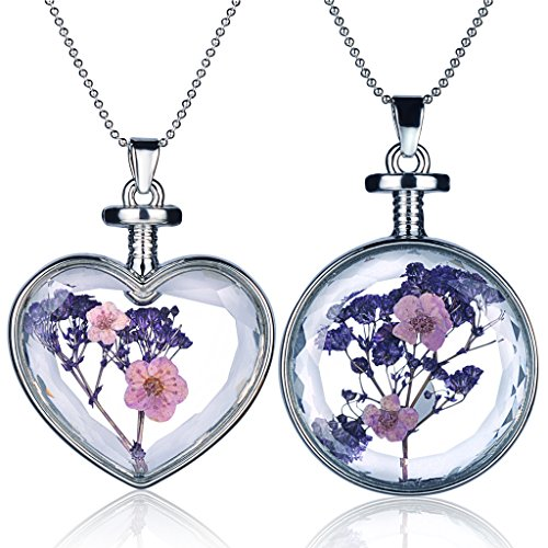 Yumilok 2pcs Purple Real Dry Flowers Forget me not Specimen Transparent Glass Alloy Heart Round Bottle Pendant Necklace for Women/Girls