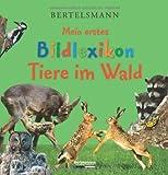 Bertelsmann Mein erstes Bildlexikon Tiere im Wald - Antje Kleinelümern-Depping