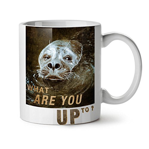 what-are-you-up-to-seal-smirk-white-tea-coffee-ceramic-mug-11-oz-wellcoda