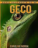 Geco: Libro de imágenes asombrosas y datos curiosos sobre los Geco para niños (Serie Acuérdate de mí)
