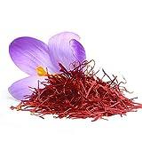 1000 Stück Safran Bonsai Krokus Zwiebeln Outdoor Blume Herbst blühende Topfpflanze für Hausgarten Zierpflanzen