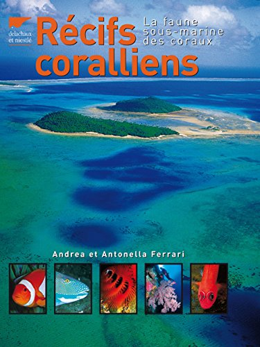 Récifs coralliens - La faune sous-marine des coraux par Andrea et antonella Ferrari