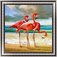 Rawuin DIY 5D Diamond Embroidery Painting Flamingo Cross Stitch Art Crafts Home Decor (#599)