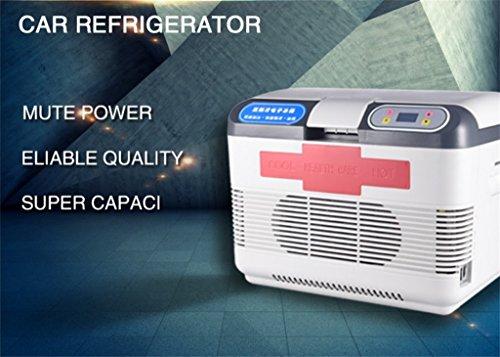 SHISHANG 12V Kompressor Kühlschrank/Auto Kühlschrank/Hause Kühlung, Heizung, Picknick/Reisen, Lagerung und Konservierung