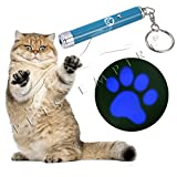 Best Cats Toys - Pets Empire Interactive Exercise Led Training Funny Cat Review