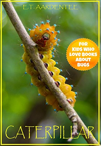 caterpillar-a-magical-caterpillar-picture-book-for-young-readers