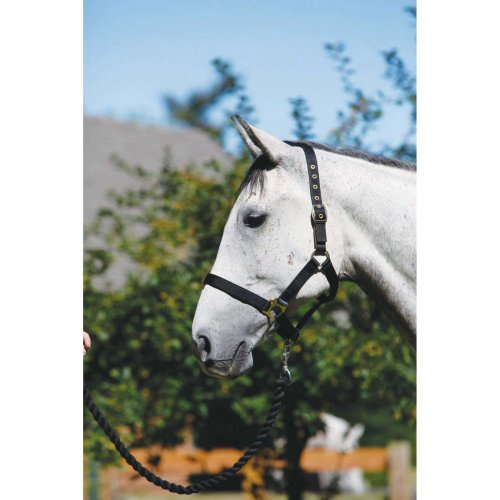 shires-headcollar-and-lead-rope-set-red-pony