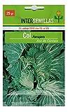 "Sobre semillas de COL Forrajera ""Asa de Cantaro"" - 25 grs."
