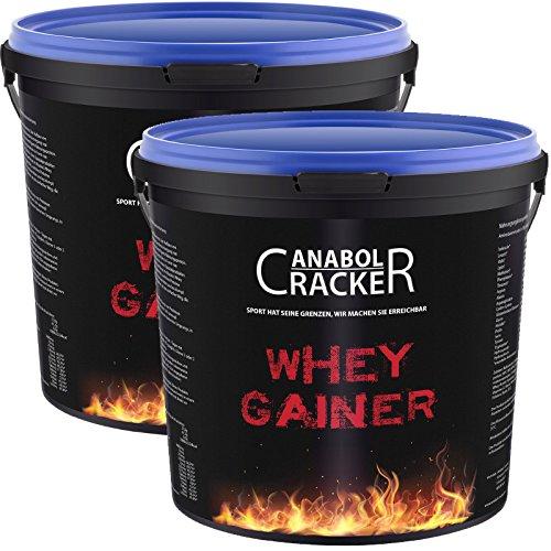 2X Whey Gainer Protein 100% rein, Hardgainer, 6000g gesamt, Vitamine, Aminosäuren Eiweißpulver (2X Plätzchen)
