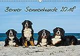 Berner Sennenhund 2018 (Wandkalender 2018 DIN A3 quer): Kalender Berner Sennenhunde 2014 (Monatskalender, 14 Seiten) (CALVENDO Tiere) [Kalender] [Apr 01, 2017] Starick, Sigrid