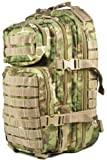 Mil-Tec Military Army Patrol Molle Assault Pack Tactical Combat Rucksack Backpack Bag 20L Arid Woodland Camo by Miltec