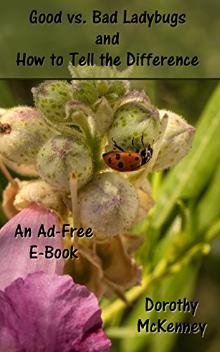 Good vs. Bad Ladybugs and How to Tell the Difference : An Ad-Free E-Book (English Edition)