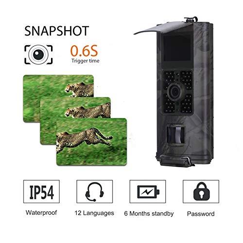 HD 16 MP Trail Kamera Jagdkamera mit automatischem IR-Filter MMS 3G Jagd Video Cam, Outdoor Wildlife Kamera, wasserdicht Instant Überwachungskamera mit Gurt und Stativhalterung für die Jagd 900 Digital Camcorder