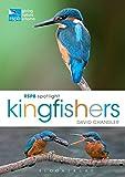 RSPB Spotlight Kingfishers