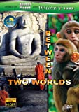 Wild Asia: Between Two Worlds [DVD] [Import]