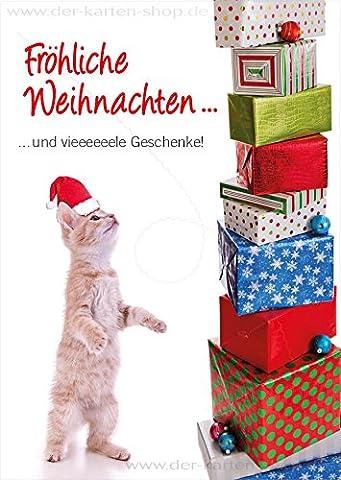 A6 Tierpostkarte, Weihnachtskarte Katze mit Nikolausmütze