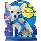Kleiner Hund vollständig verstellbares Hundegeschirr Leine Set Pet Puppy Leine Seil Sicherer Kordel Bright Neon Farben Hi Sichtbarkeit
