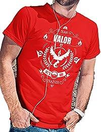 bac45302403e8 Camiseta Team Valor Pokémon Go de LeRage Shirts para hombre