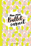 Mon mini-bullet carnet