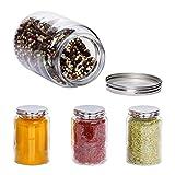 MamboCat 4-TLG. Gewürz-Gläserset Doria | 520 ml | bauchiges Vorratsglas mit Schraub-Deckel Silber | Wiederverwendbare Aufbewahrungs-Dose | rund | Vintage