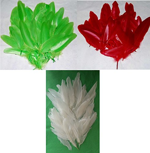 Zellophan Federn–Rot, Grün & Weiß–1Stück jedes–Weihnachtskugeln–durchschnittlich Federn 216Für - Brownie Crafts Halloween