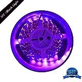 FFNW 5M/16.4ft 3528 SMD Blacklight UV/Ultraviolet 395nm-405nm LED Light Strip Fixtures DC 12V 60leds/m 300 LED Purple Light Bulb Lighting