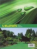 Image de Il millepiante. Guida alle piante dei vivai d'Italia