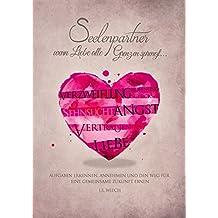 Seelenpartner - wenn Liebe alle Grenzen sprengt: Aufgaben erkennen, annehmen und den Weg für eine gemeinsame Zukunft ebnen