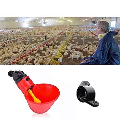 DingLong Wasserspender Feeder für Huhn, Automatisch Tränkanlagen,