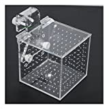 Aquarium Isolationsbox / Quarantänebox, Ablaichkasten, Aufzuchtkasten, Box für Korallenableger, 10x10x10 cm
